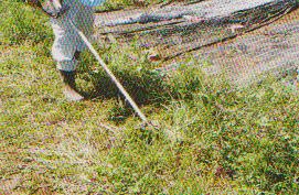 grass-mower14