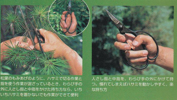 Garden-scissors6