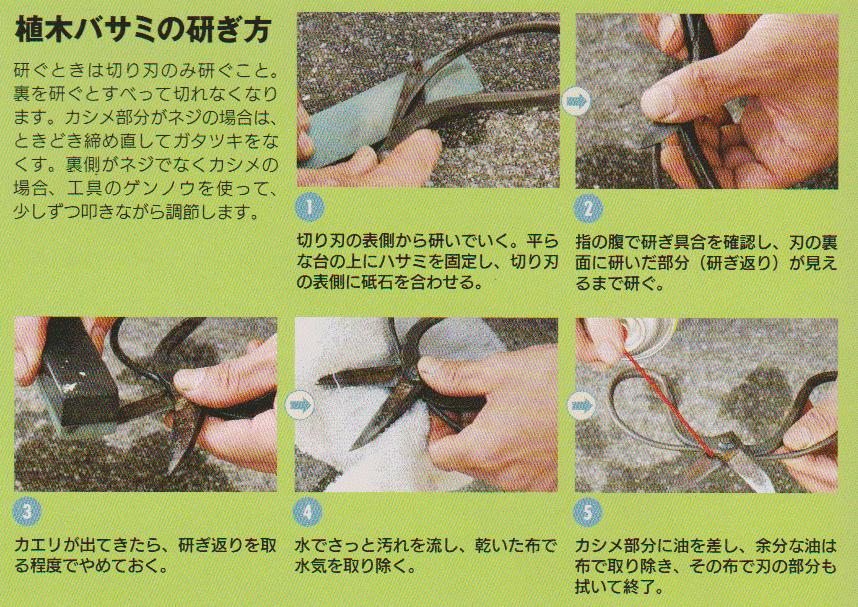 Garden-scissors7