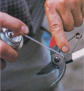 Pruning-scissors12