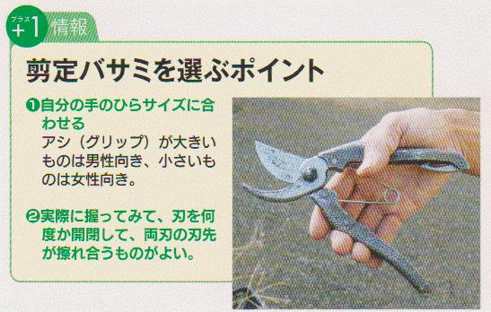 Pruning-scissors2