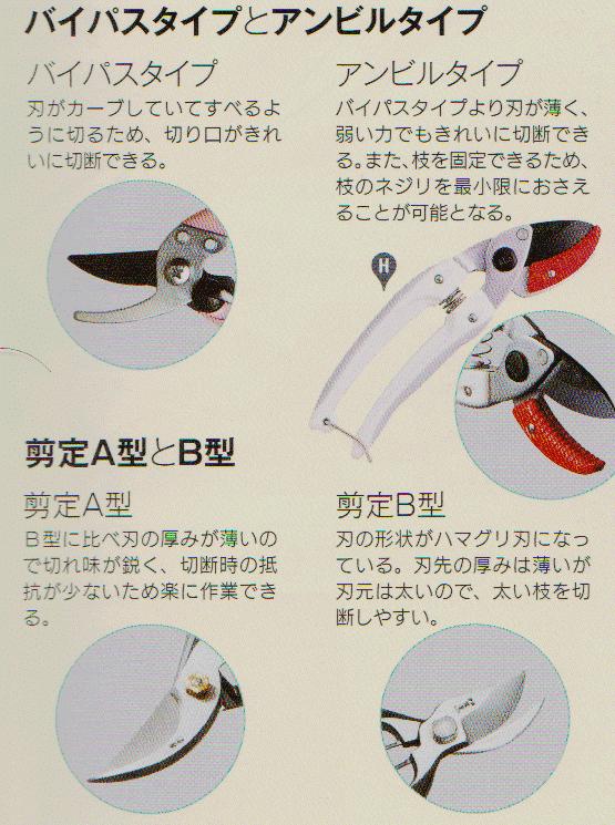 Pruning-scissors3