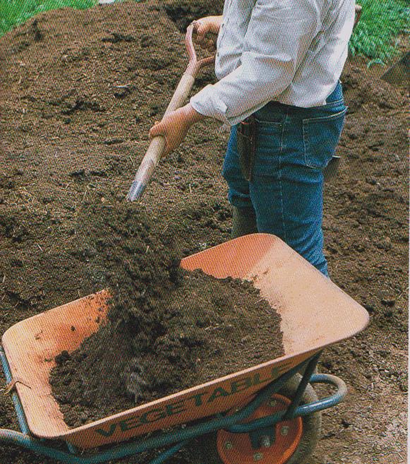 Scoop,-shovel9
