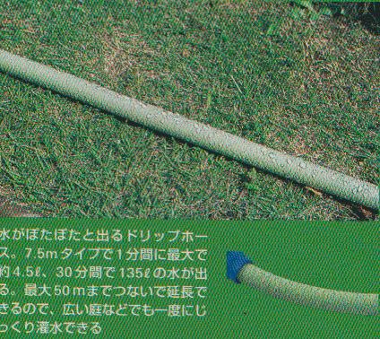sansuitu-bu1